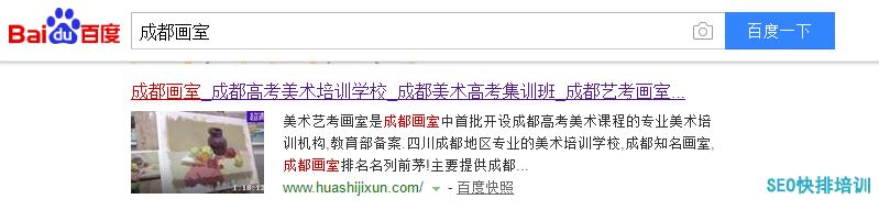 seo霸屏教育行业客户案例